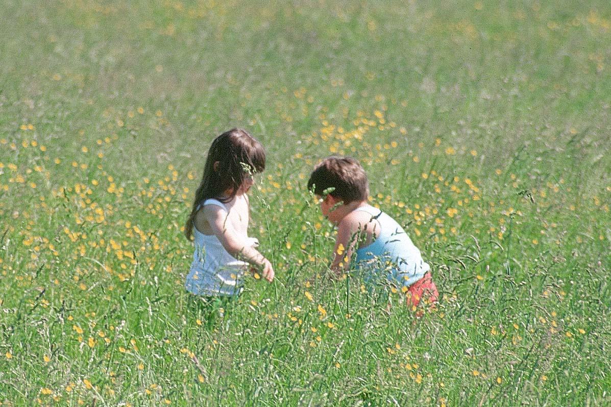 Children Hg5